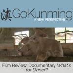 GoKunming评论(英文)